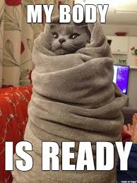Cold Meme - the cold got me like memes