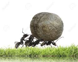 ant hill images u0026 stock pictures royalty free ant hill photos and