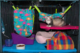Large Ferret Cage Top 10 Ferret Cages Links And Prices