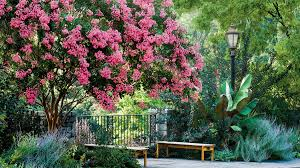 Pink Spring Flowering Shrubs - the south u0027s most iconic flowers southern living