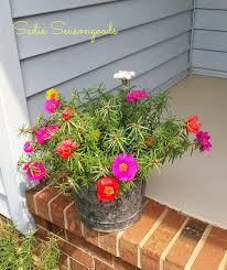 vintage bucket and faucet planter hometalk