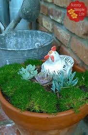 sunny simple life succulent container gardens low water garden ideas