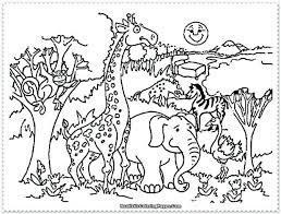 zoo animal lessons for kindergarten animals coloring sheet