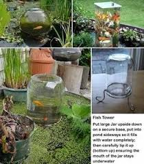 How To Build A Fish Pond In Your Backyard Best 25 Outdoor Fish Ponds Ideas On Pinterest Outdoor Fish Tank