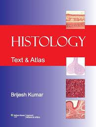 Anatomy And Physiology 7th Edition Saladin Histology Text U0026 Atlas Brijesh Kumar Essentials Of Human