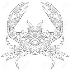 stylized cartoon crab isolated on white background sketch for