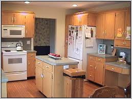 paint colors for kitchen cabinets with white appliances painting