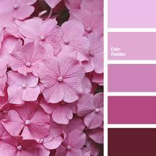 light pink color light pink color color palette ideas
