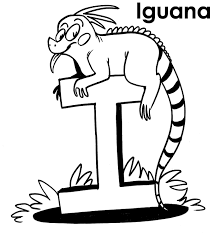 printable iguana coloring pages coloring me