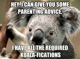 Parenting Advice Meme - hey i can give you some parenting advice i have all the required