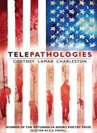 Meaning Of American Flag Cortney Lamar Charleston On