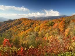 fall foliage u2013 townsend