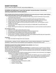 awesome financial modelling resume images simple resume office