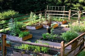 Garden Layout Ideas Backyard Edible Garden Design Garden Backyard Vegetable Garden