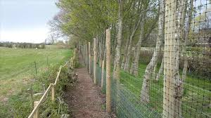 Types Of Fencing For Gardens - types of deer fencing backyard fence ideas
