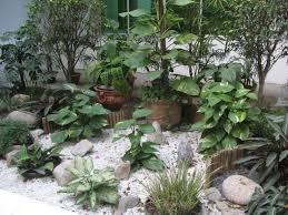 Indoor Rock Garden - download new gardening ideas solidaria garden
