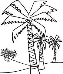 coloring pictures of a palm tree palm trees color pages coloring pages