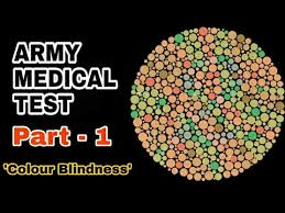 Color Blindness Book Army Medical Test Eye Test L Color Blindness Test L Ishihara