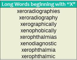words that start with x wordrequest com