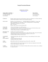 Sample Combination Resume Format by Format Combination Format Resume