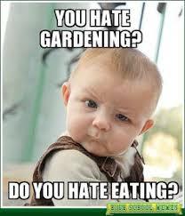 Organic Food Meme - organic food meme 28 images organic memes image memes at