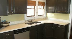 diy painting kitchen cabinets ideas is painting kitchen cabinets a idea 100 images lovely painted