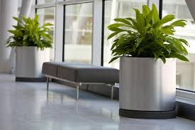 modern indoor planters wonderful indoor planters u2013 landscaping