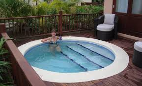 small pools for small yards pools in small yards best 25 small backyard pools ideas on nurani