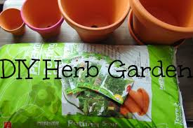 diy herb garden easy to make and maintain for fresh food