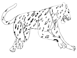 realistic animal coloring pages coloringsuite com