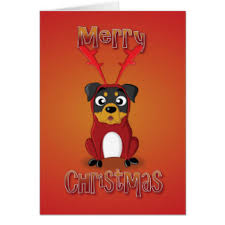 rottweiler cards rottweiler greeting cards