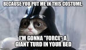 Star Wars Cat Meme - grumpy cat star wars meme imgflip