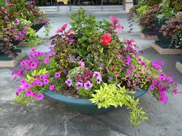 Ideas For Container Gardens Landscape Container Gardening Of Strawberry Decoration With