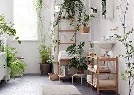 plante verte dans une chambre des plantes vertes pour une salle de bains tendance