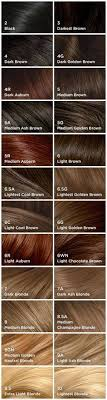 nicen easy color chart fall in love with hair color chart colour chart hair coloring and