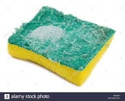 kitchen sponge isolated dirty kitchen sponge with soap suds against a white stock