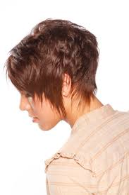 27 best images about shorthair styles on pinterest short hair