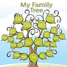best 25 family tree projects ideas on family tree