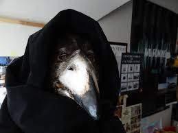 Crow Halloween Costume Plague Doctor Mask Paper Mache Mask Crow Mask Raven Mask