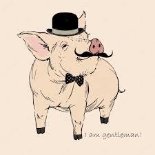 pig stock vectors royalty free pig illustrations depositphotos