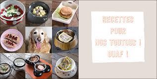comment cuisiner du chien gagnez un exemplaire dédicacé du livre je cuisine pour mon chien