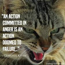 quotes about karma an committed in anger is an