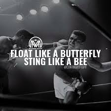 float like a butterfly sting like a bee millionaire mentor