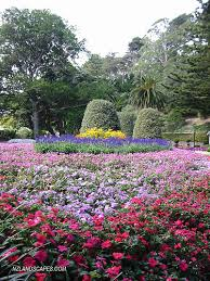 New Zealand Botanical Gardens Gardens Wellington Botanical Gardens New Zealand Ph Flickr