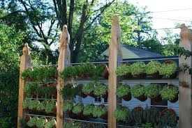 decorations 15 fantastic ideas for decorating your garden fence