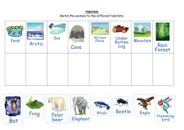 match the animals to their habitats by ruthbentham teaching