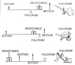all worksheets 10th grade science worksheets printable