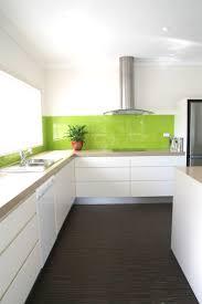 100 lime green kitchen ideas 25 best beauteous birdcages