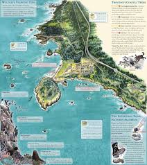 Map Ca Trinidad California Map California Map