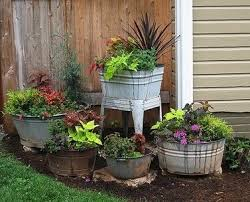best 25 container garden ideas on pinterest outdoor potted